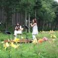 2011/07/30@Mt.Fuji Lily Park.